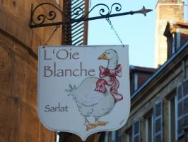 L'OIE BLANCHE by isabelle13280