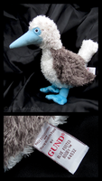 Gund - Blue Footed Booby Plush by The-Toy-Chest