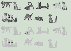 Warrior Cat Bases by Emo-Ninja-Girl