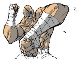 sagat finally! by tincan21