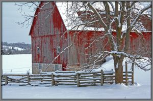 Weathered Barn by Rebacan