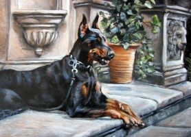 Doberman Pinscher by Katie-Z