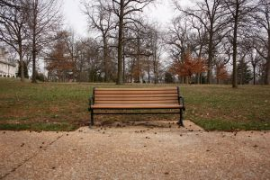 bench 2 by pattysmear