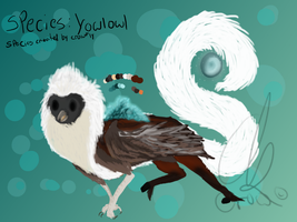 Male YowlOwl For sale by GalaxyCrowButt