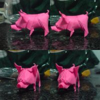 Quentin's Pig by spiritofcat