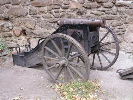 cannon by Caltha-stock