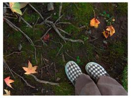 Trendy shoes and tree roots. by Nikx