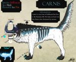 Carnis Reference Sheet by VorpalBeast