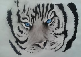 Face of a  Blue-eyed White Tiger by DemonRed6