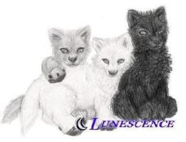 -+ Lupine Kin +- by lunescence