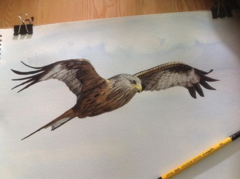 WIP watercolour by CarbonData