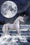 The Unicorn Under The Moon by emmaalvarez