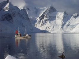 Fisherman Lofoten and a seagull by Pabzzz
