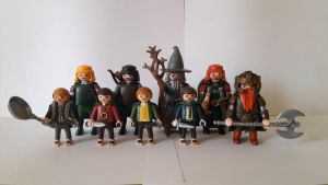 The Fellowship of the Ring by marcoc5417