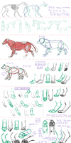 Wolf - Research And Practice Sheet by Minks-Art