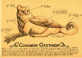 Field Sketch - Gryphon by Clerical-Error