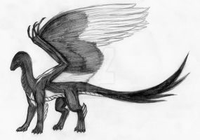 Magpie dragon by Nyranor