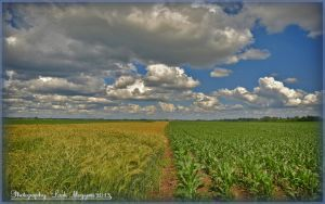 Hungarian landscapes.   HDR-picture by magyarilaszlo