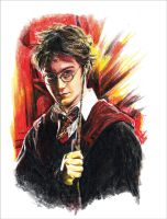 Harry Potter by RobD4E