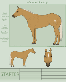 PD Golden Gossip - AQH by painted-cowgirl
