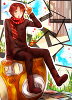 APH --- ITALY polaroid -- COLLAB by aphin123