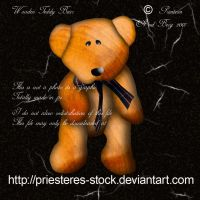 wooden teddy by priesteres-stock