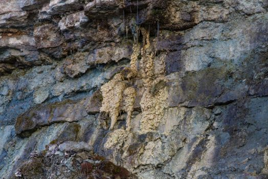 6563 by Heardbydeaf