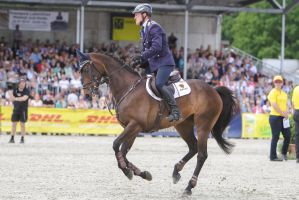 3DE Show Jumping Phase Stock 123 Gallop by LuDa-Stock