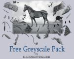 FREE Horse Greyscale Pack by BLACKNIGHTINGALE81 by BLACKNIGHTINGALE81