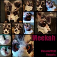 Meekah fursuit head and tail by phoenixwolf33