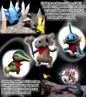 Pokemon Mystery Dungeon Entry