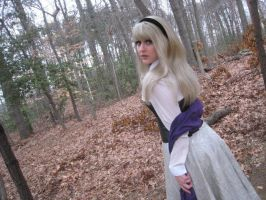 Briar Rose Cosplay by SunshineAlways