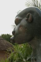 African statue - profile by steppelandstock