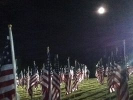 Healing Field 2 by wittlecabbage