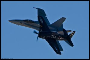 Navy Heritage Nellis by AirshowDave