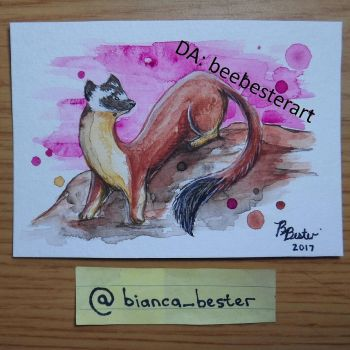 Bridled weasel by beebesterart