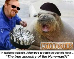 Mythbusters by JRRacing64