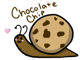 Cookie Snail : Chocolate Chip (CLOSED) by MelodyoftheNightFury