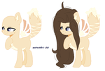 |MLP| Reference of  Sunlight Dawn by TuncHawk