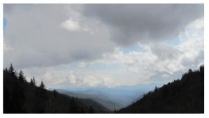 Above the Clouds - The Smoky Mountains by CrystalMarineGallery