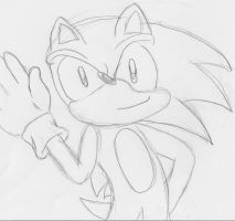 Best Hedgehog ever by fansonic15