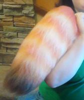 Short Poofy Red Panda Tail by KittenConcoctions