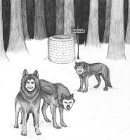 Ender's Game_Child Wolves by Fallingfreely