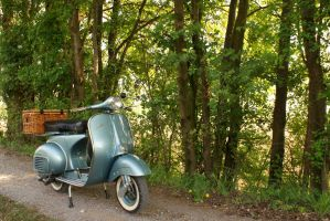 my vespa in the trees by fontah2