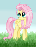 Good Morning, Fluttershy by Robsa990
