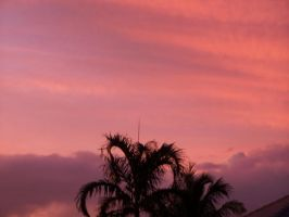 pink sky by TheCauseOf