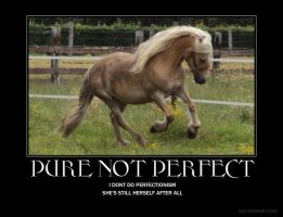 pure not perfect by astridlover
