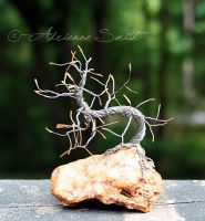 Mini Autumn Bonsai $30 by Roses-to-Ashes