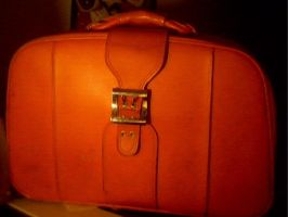 My Rockstar Suitcase by earthly-delight