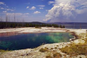 Pure Yellowstone by SharingMyDreams